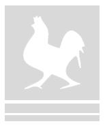 Hendlmeier Objektdesign